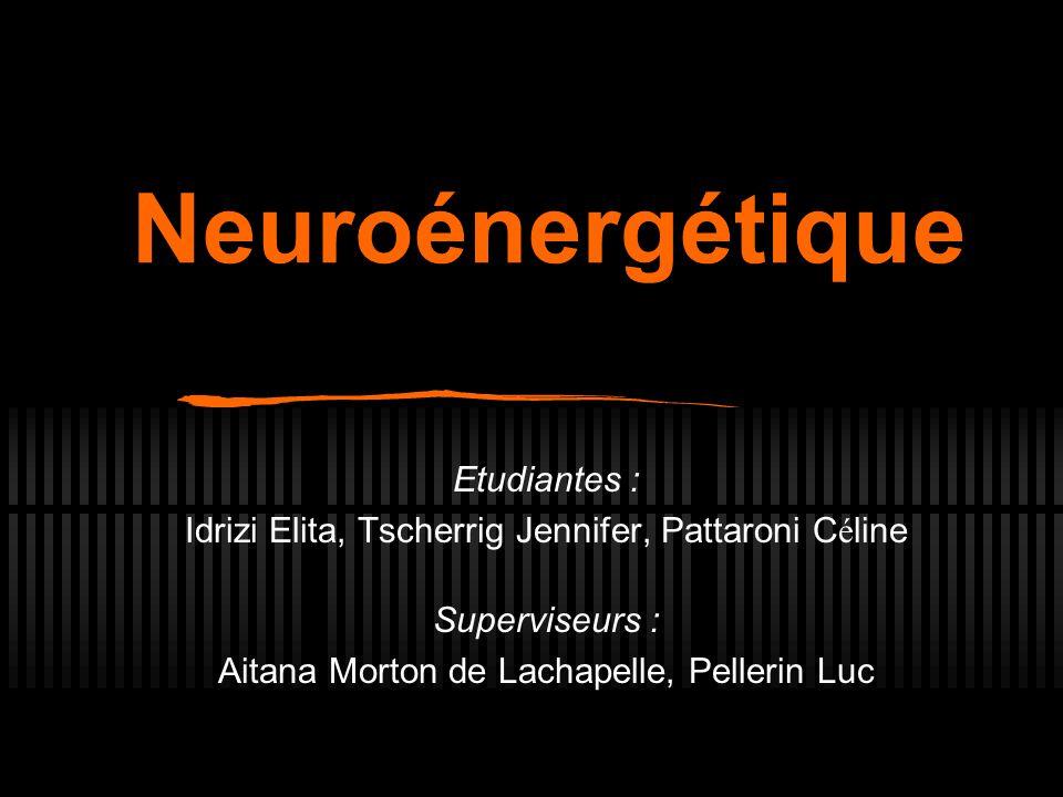 Neuroénergétique Etudiantes :