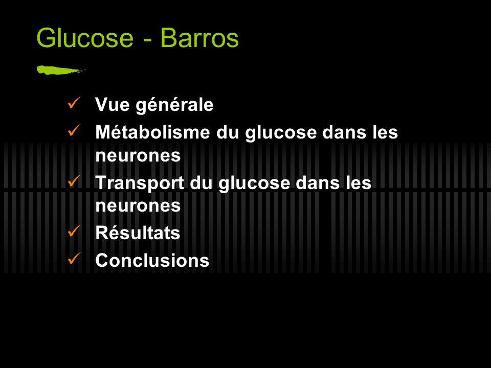 Glucose - Barros Vue générale Métabolisme du glucose dans les neurones