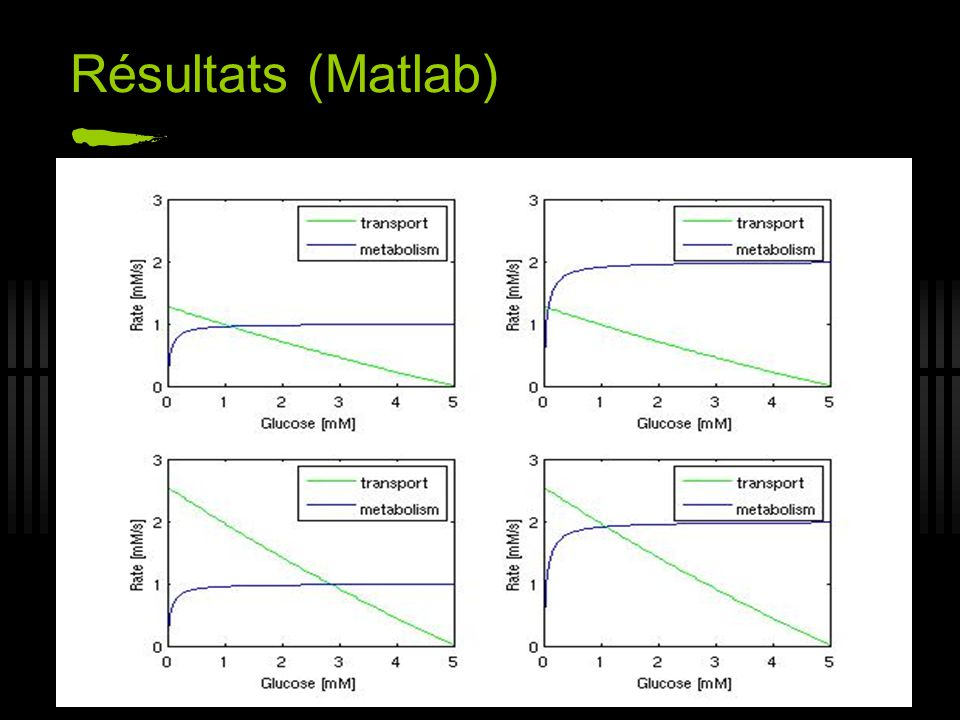 Résultats (Matlab)