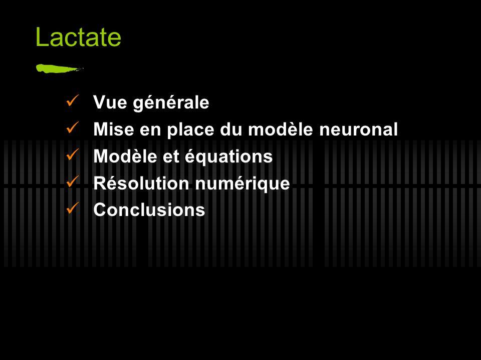 Lactate Vue générale Mise en place du modèle neuronal