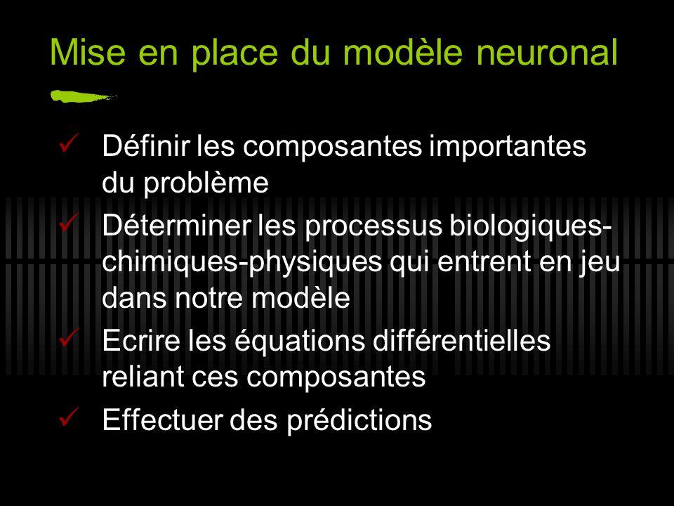 Mise en place du modèle neuronal