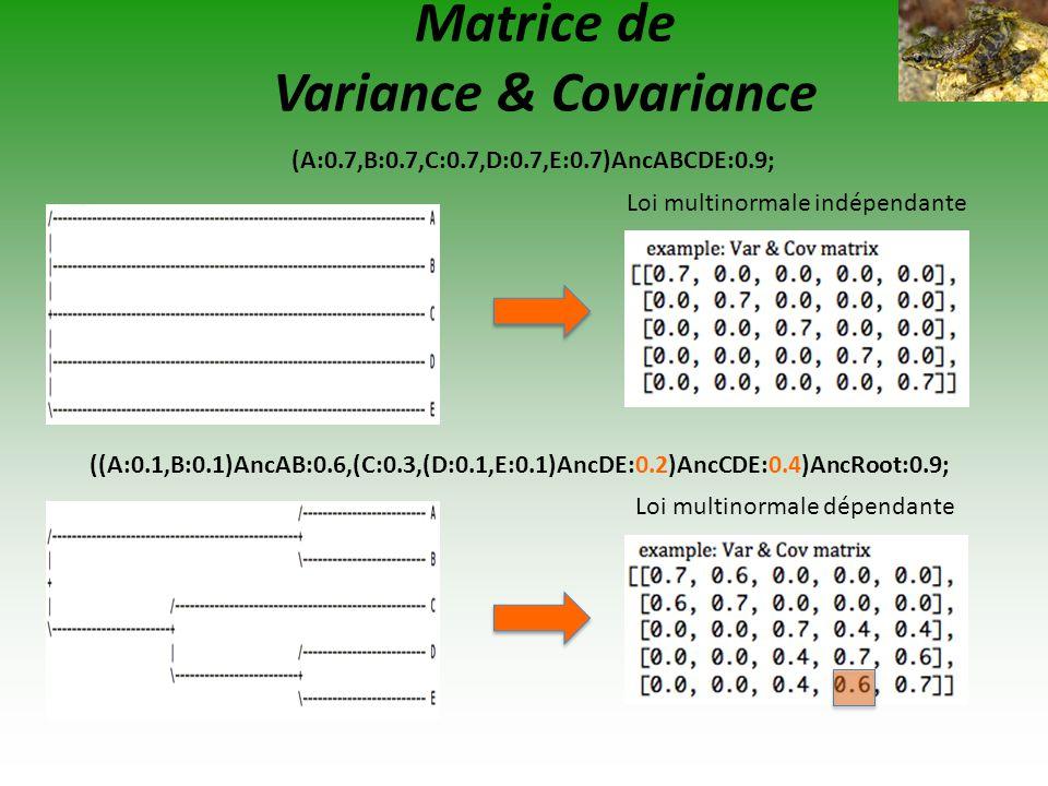 Matrice de Variance & Covariance