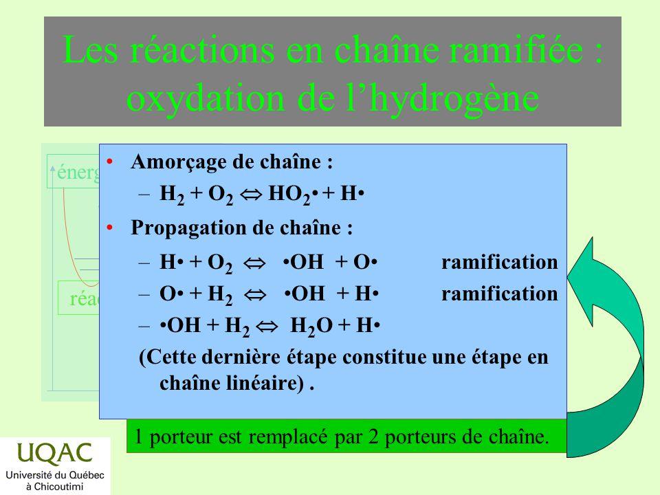 Les réactions en chaîne ramifiée : oxydation de l'hydrogène