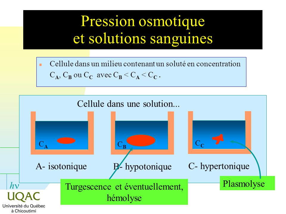 Pression osmotique et solutions sanguines