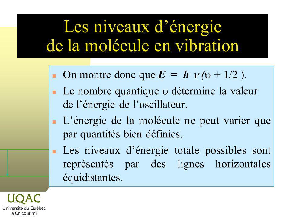 Les niveaux d'énergie de la molécule en vibration