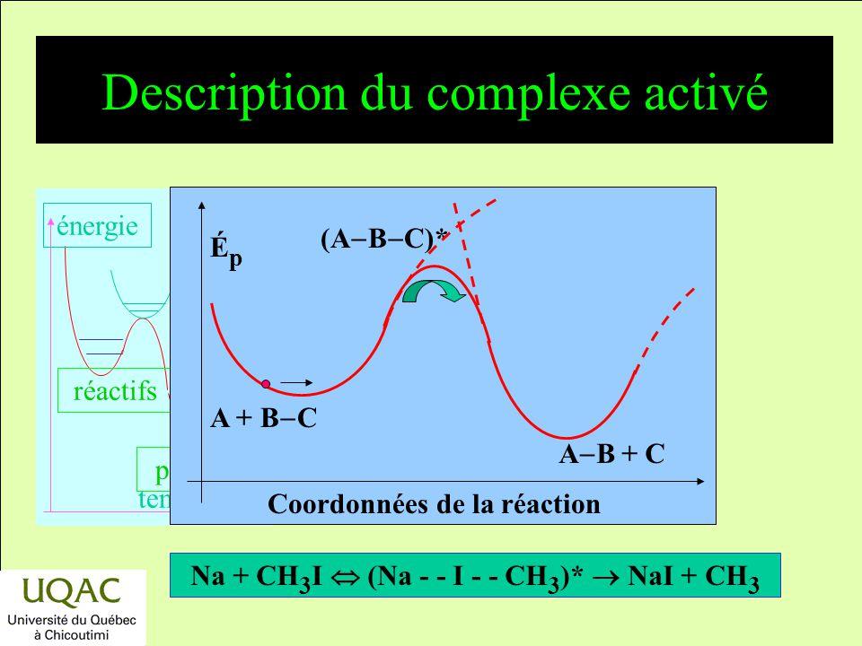 Description du complexe activé