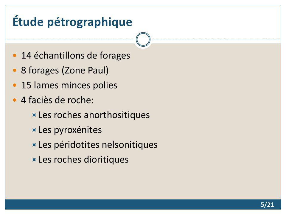 Étude pétrographique 14 échantillons de forages 8 forages (Zone Paul)