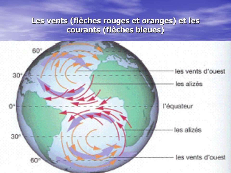 Les vents (flèches rouges et oranges) et les courants (flèches bleues)