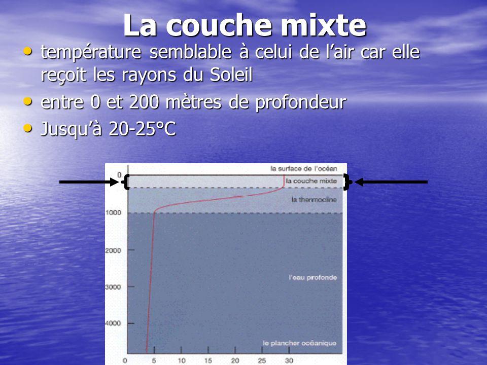La couche mixte température semblable à celui de l'air car elle reçoit les rayons du Soleil. entre 0 et 200 mètres de profondeur.