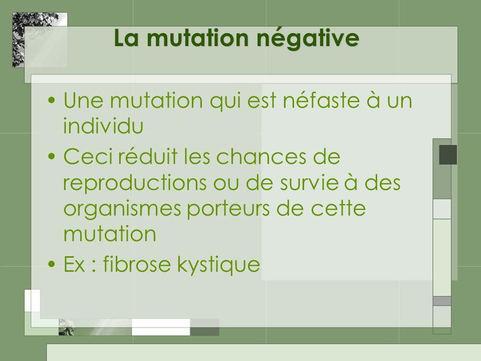 La mutation négative Une mutation qui est néfaste à un individu