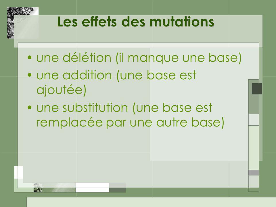 Les effets des mutations