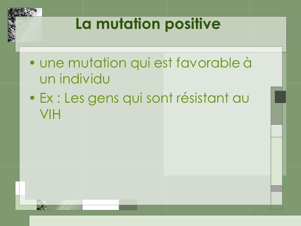 La mutation positive une mutation qui est favorable à un individu