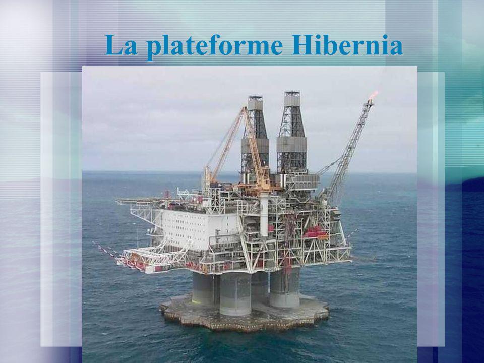 La plateforme Hibernia