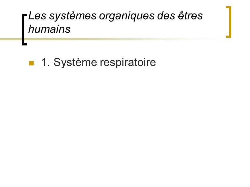 Les systèmes organiques des êtres humains