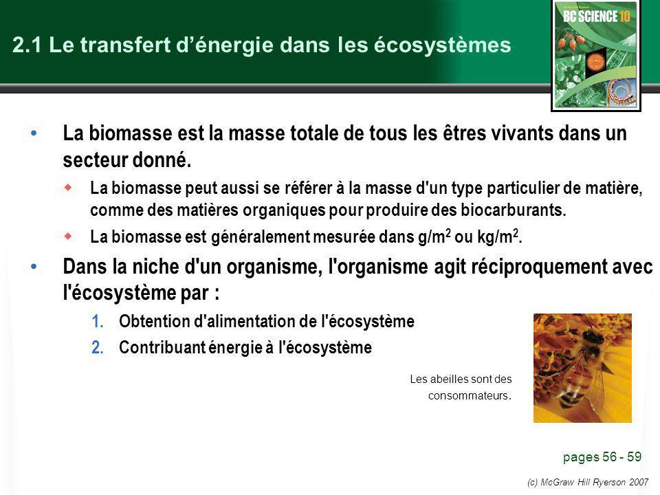 2.1 Le transfert d'énergie dans les écosystèmes