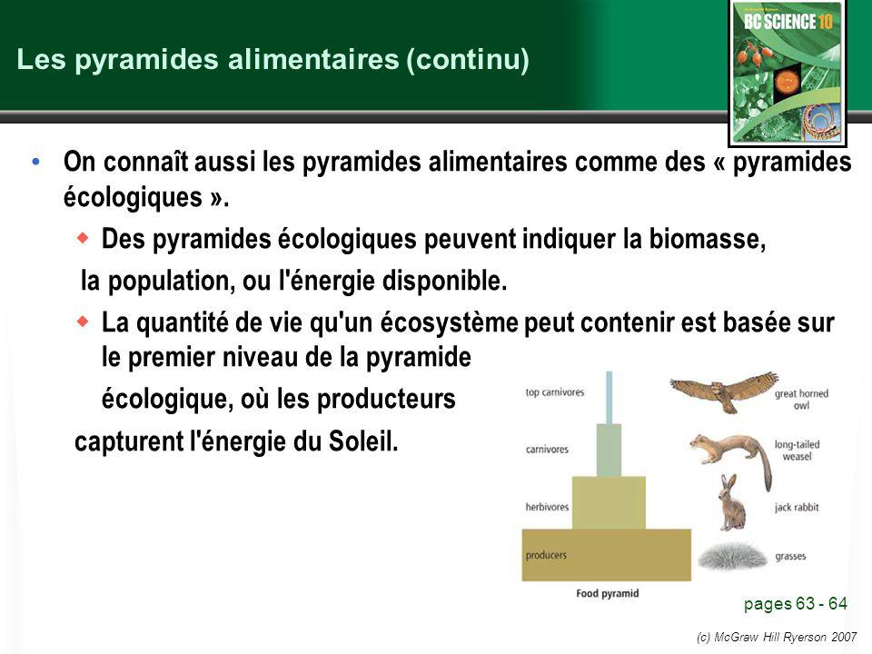 Les pyramides alimentaires (continu)