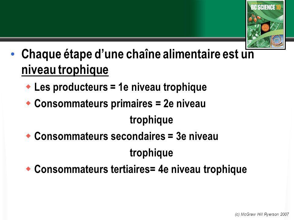 Chaque étape d'une chaîne alimentaire est un niveau trophique