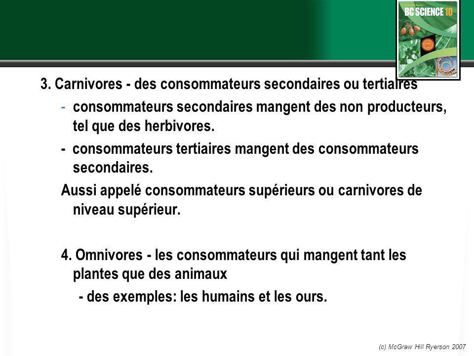 3. Carnivores - des consommateurs secondaires ou tertiaires