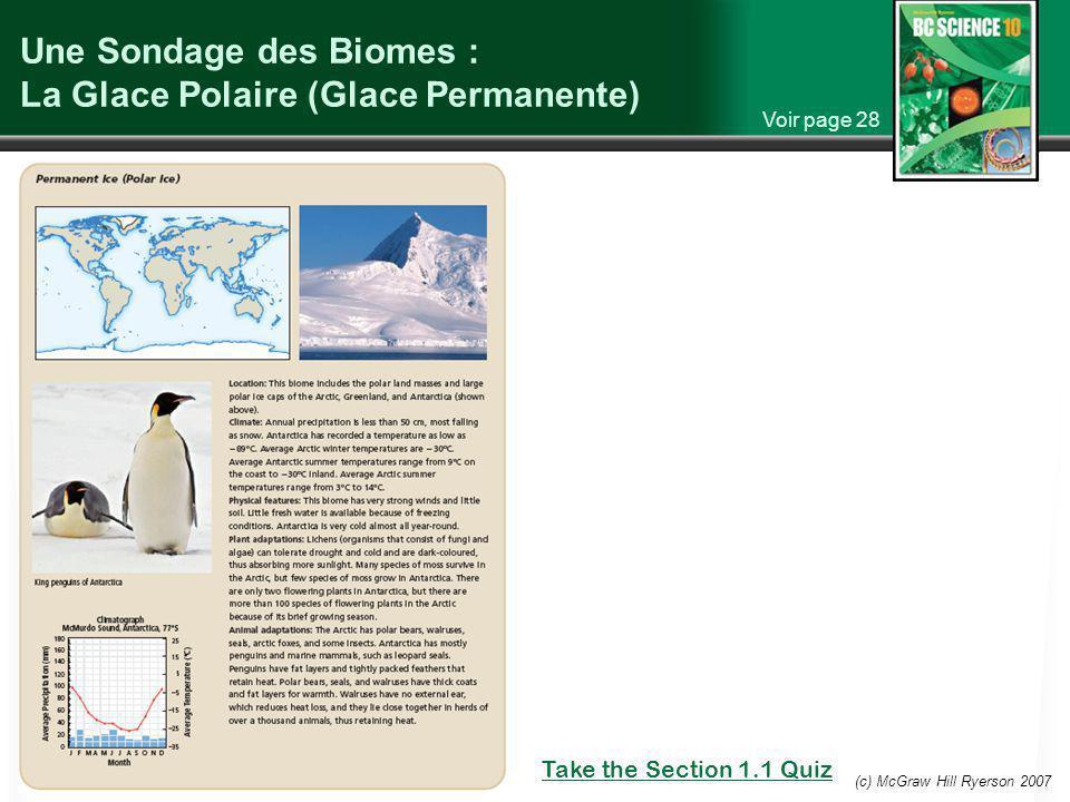 Une Sondage des Biomes : La Glace Polaire (Glace Permanente)
