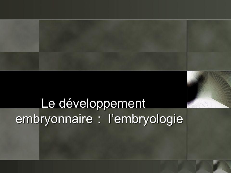 Le développement embryonnaire : l'embryologie