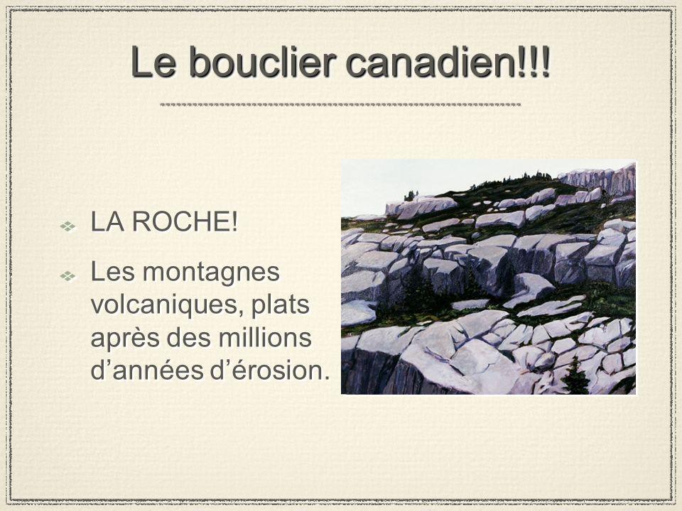 Le bouclier canadien!!! LA ROCHE!