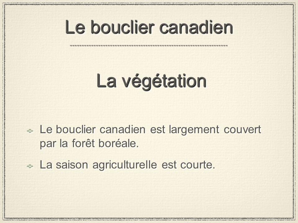Le bouclier canadien La végétation