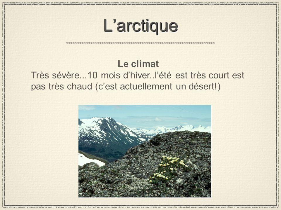 L'arctique Le climat.