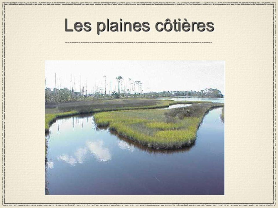 Les plaines côtières