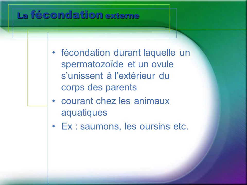 La fécondation externe