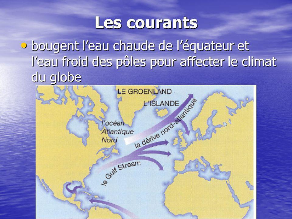 Les courants bougent l'eau chaude de l'équateur et l'eau froid des pôles pour affecter le climat du globe.