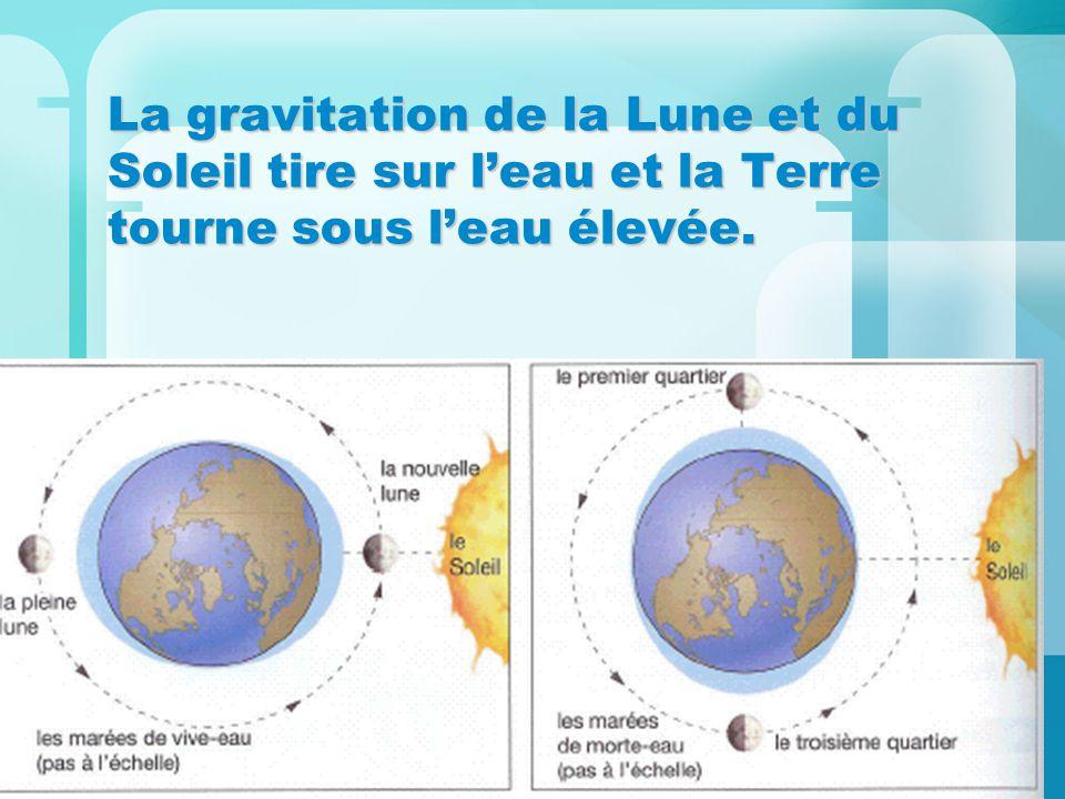 La gravitation de la Lune et du Soleil tire sur l'eau et la Terre tourne sous l'eau élevée.