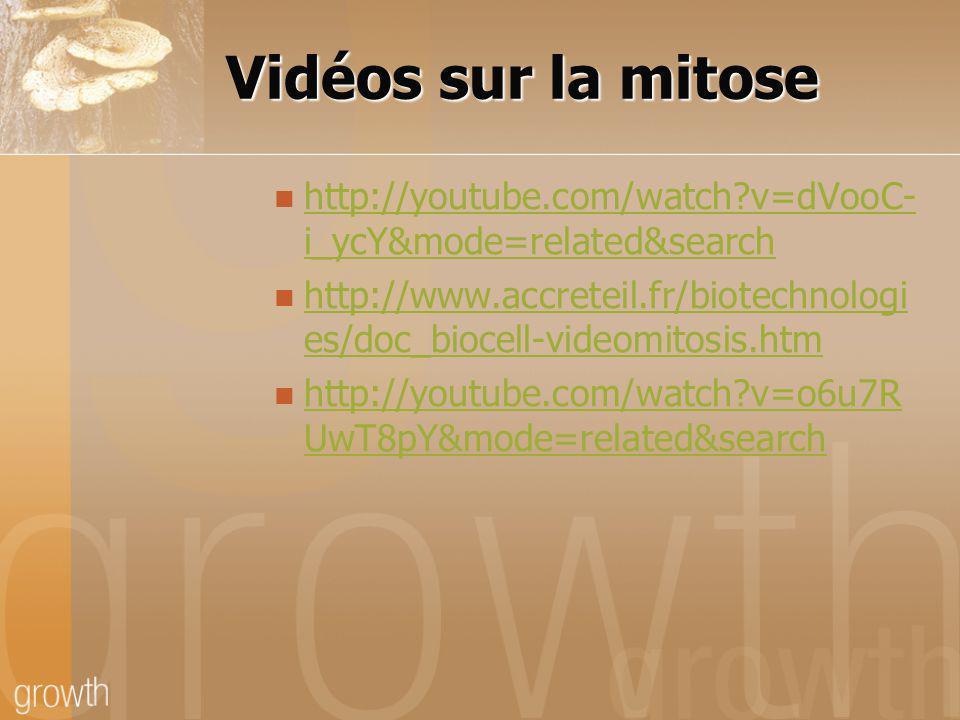 Vidéos sur la mitose http://youtube.com/watch v=dVooC-i_ycY&mode=related&search.