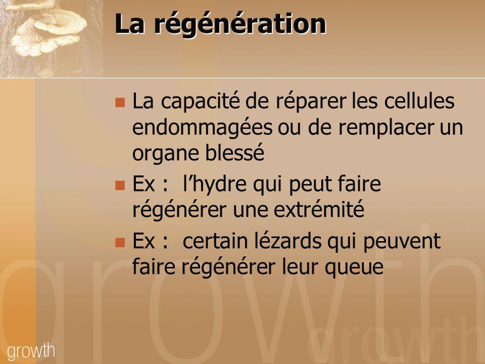 La régénération La capacité de réparer les cellules endommagées ou de remplacer un organe blessé.