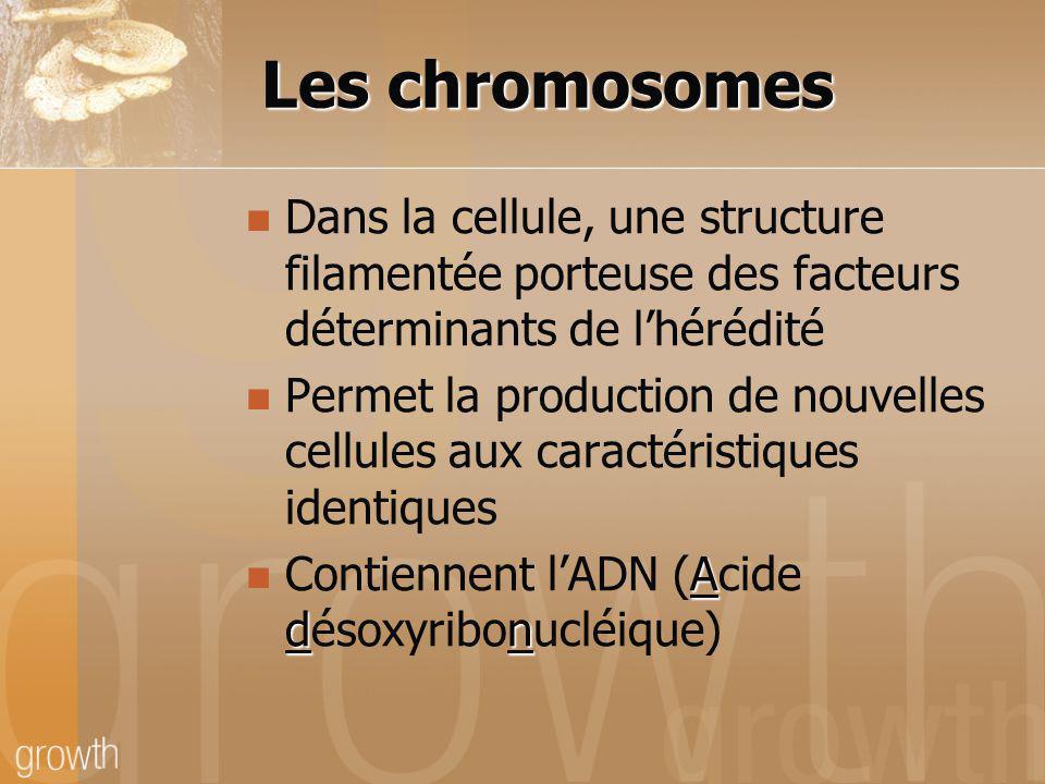 Les chromosomes Dans la cellule, une structure filamentée porteuse des facteurs déterminants de l'hérédité.