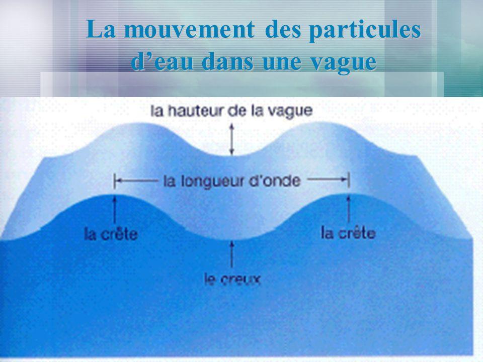 La mouvement des particules d'eau dans une vague