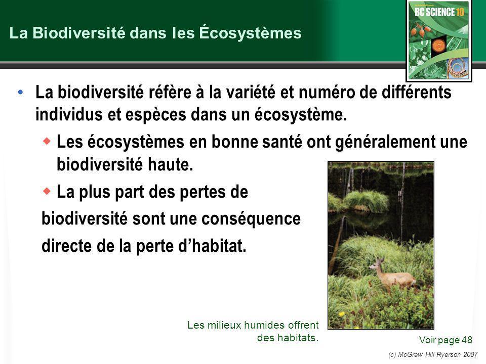 La Biodiversité dans les Écosystèmes