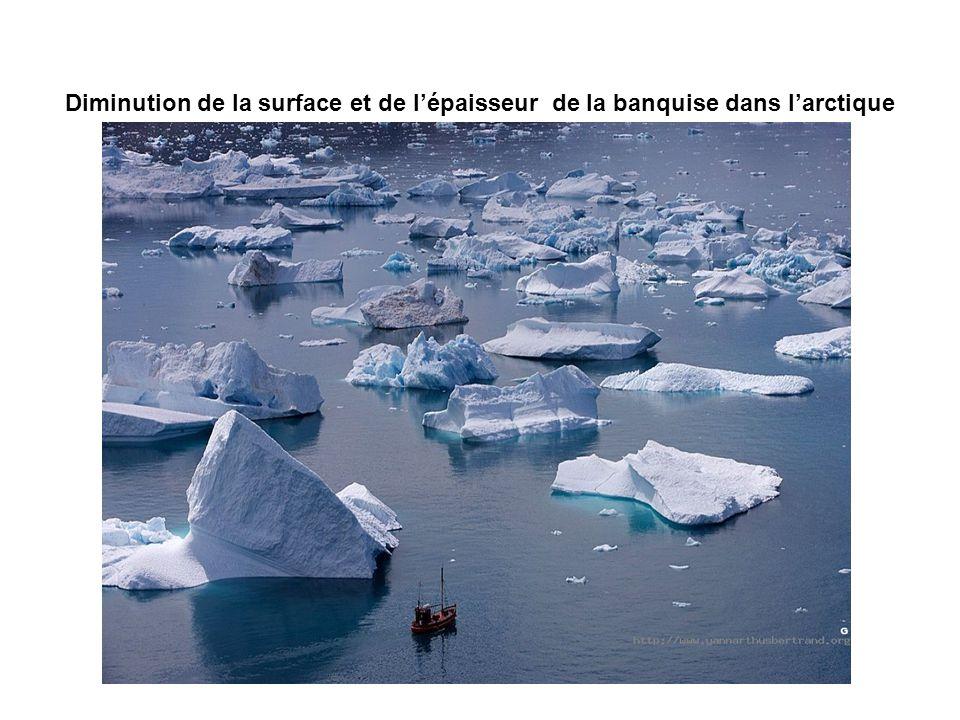 Diminution de la surface et de l'épaisseur de la banquise dans l'arctique