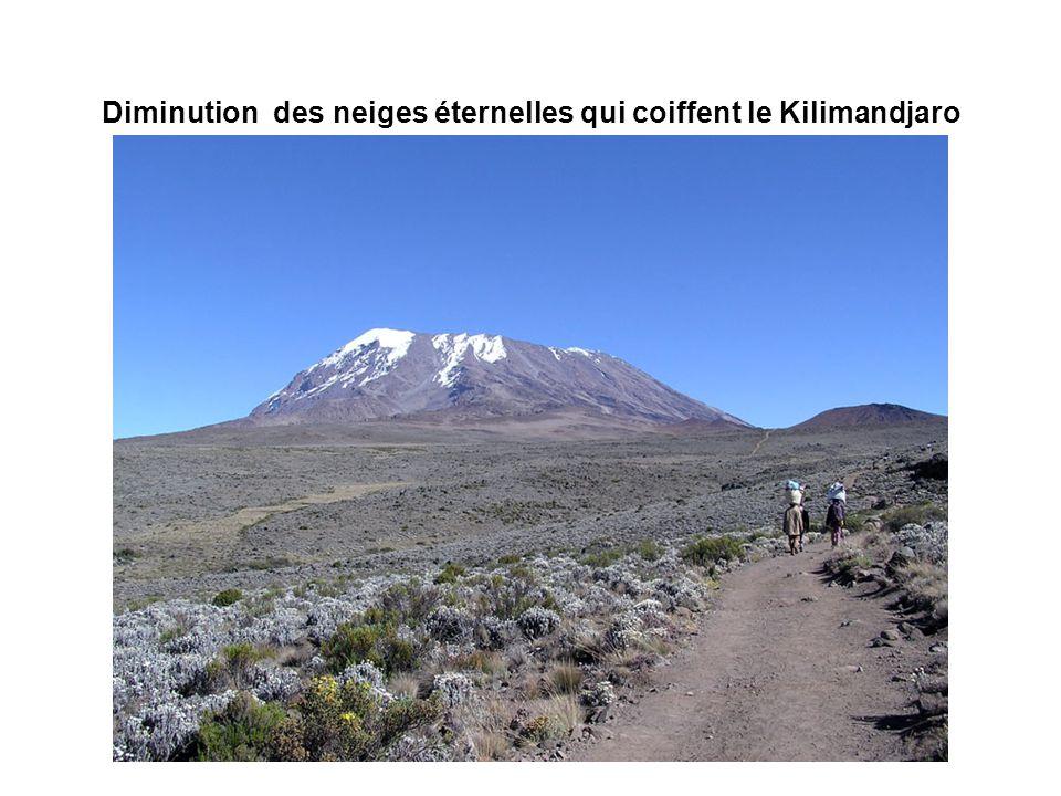 Diminution des neiges éternelles qui coiffent le Kilimandjaro