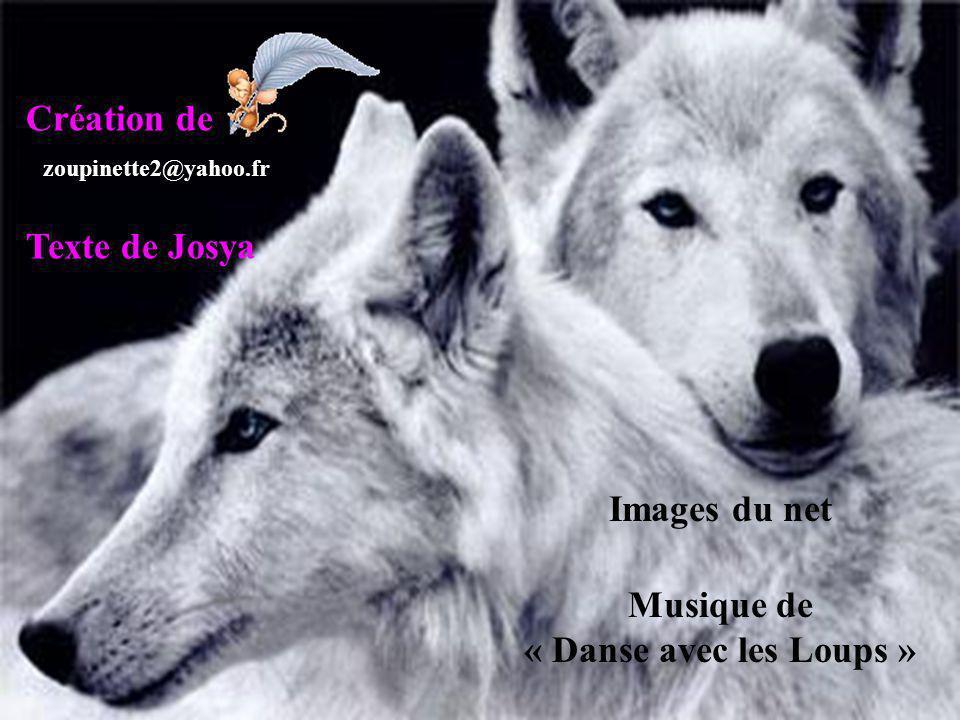 Musique de « Danse avec les Loups »