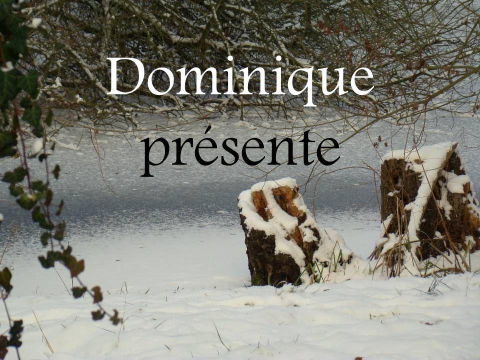 Dominique présente