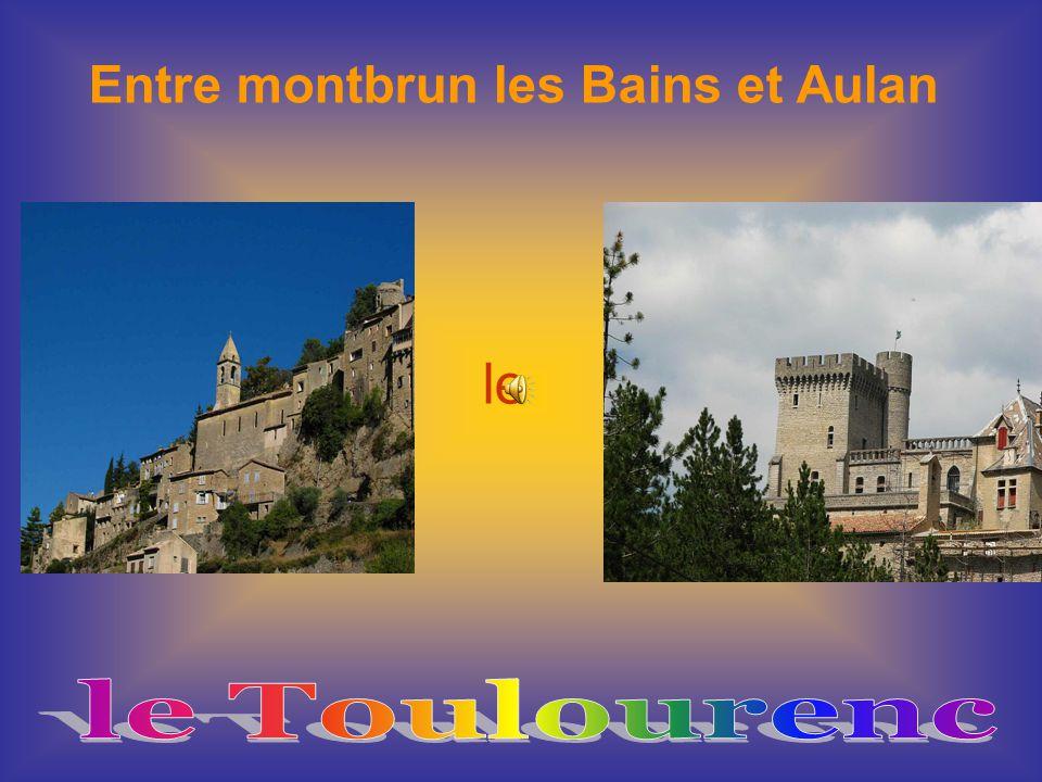 Entre montbrun les Bains et Aulan