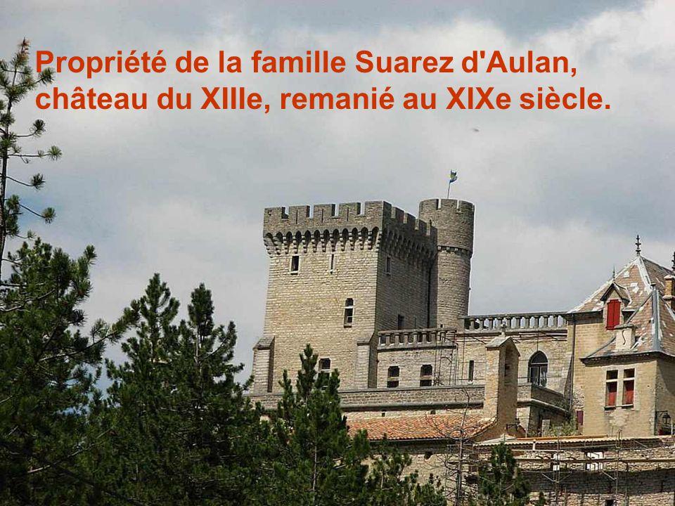 Propriété de la famille Suarez d Aulan, château du XIIIe, remanié au XIXe siècle.