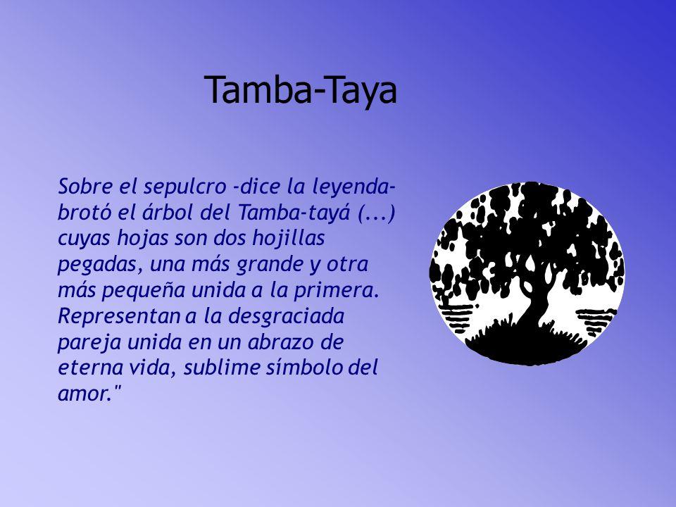 Tamba-Taya