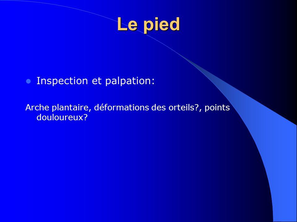 Le pied Inspection et palpation: