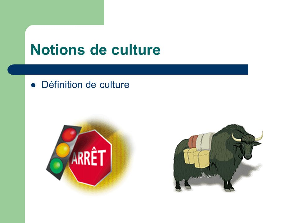 Notions de culture Définition de culture