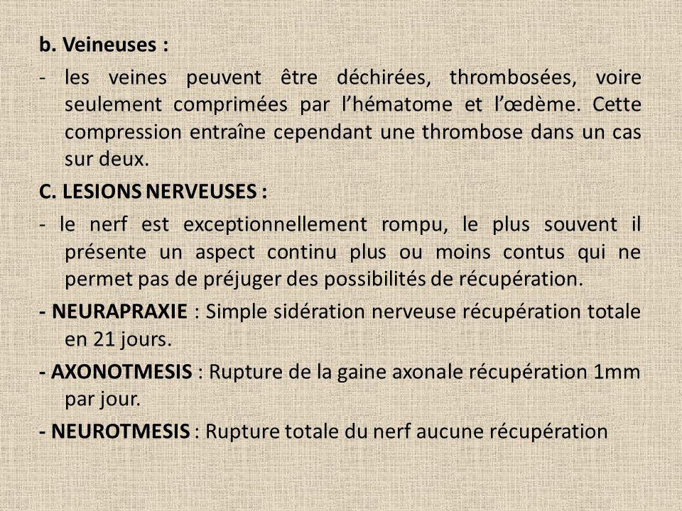 b. Veineuses :