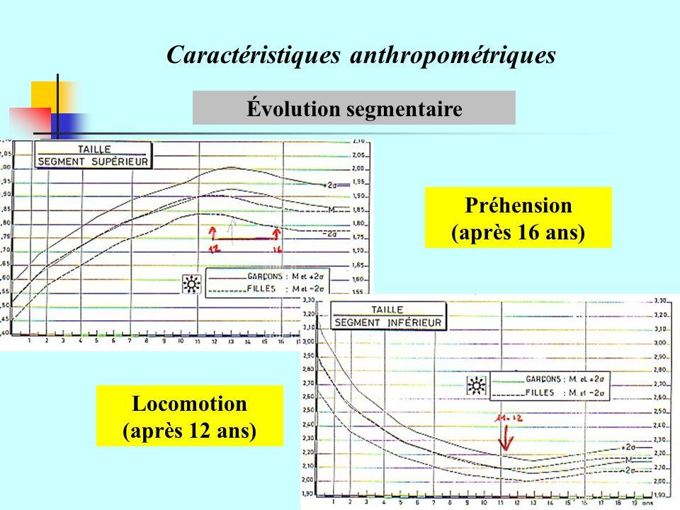Évolution segmentaire Préhension (après 16 ans)