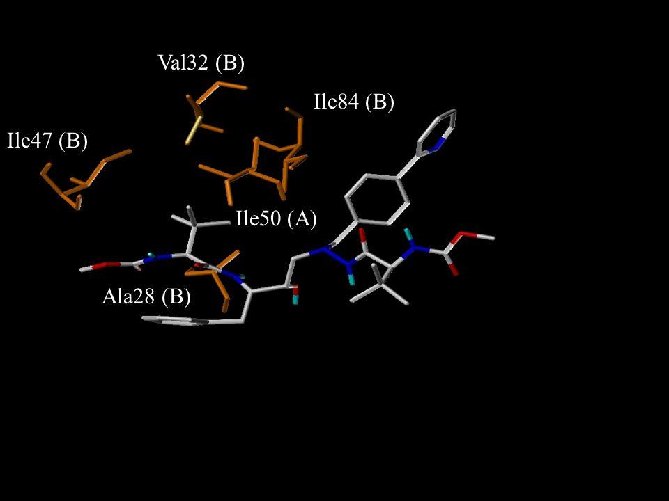 Val32 (B) Ile84 (B) Ile47 (B) Ile50 (A) Ala28 (B)