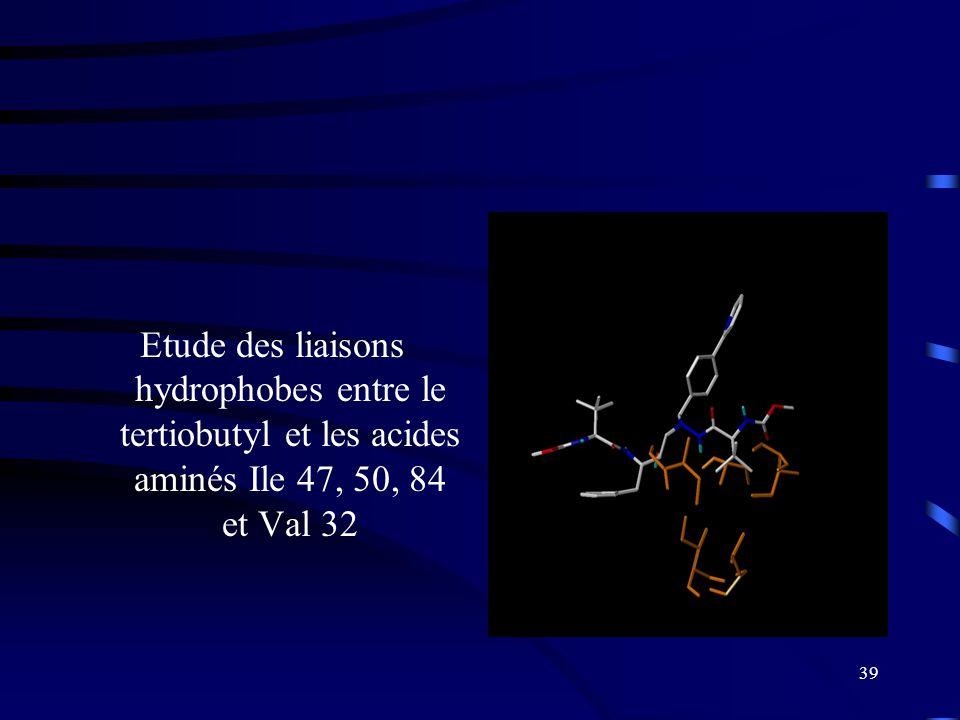 Etude des liaisons hydrophobes entre le tertiobutyl et les acides aminés Ile 47, 50, 84 et Val 32