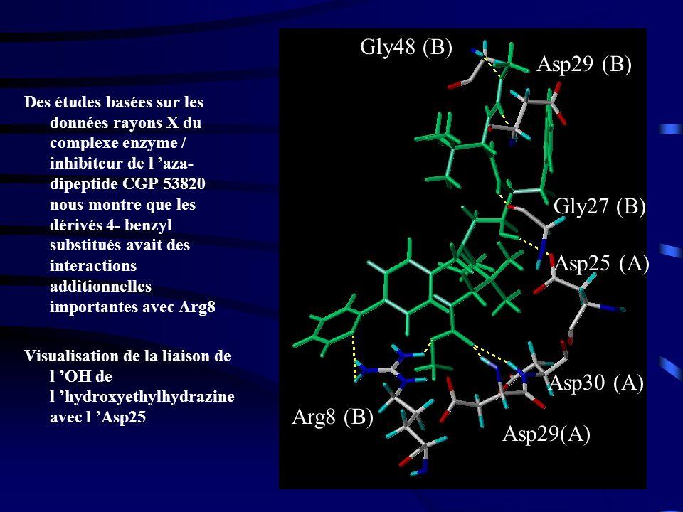 Gly48 (B) Asp29 (B) Gly27 (B) Asp25 (A) Asp30 (A) Arg8 (B) Asp29(A)